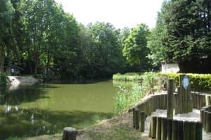 Een kampeercentrum in Noord-Limburg