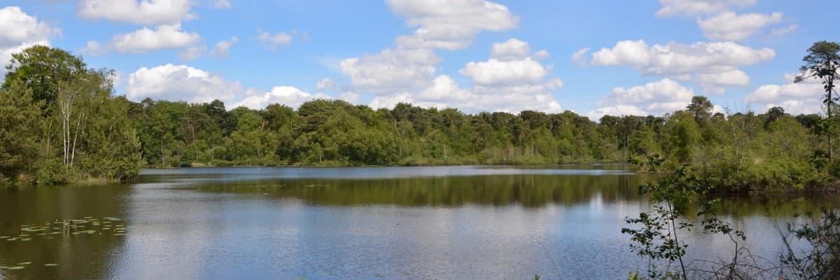 Bungalowpark De Rosep